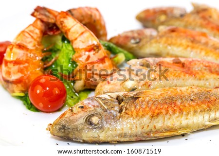 grilled fish with shrimp salad on a white background in the restaurant - stock photo