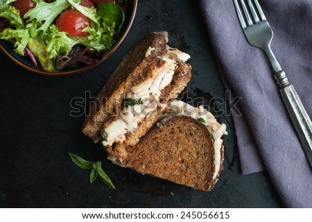 Grilled gruyere sandwich with chicken and salad - stock photo