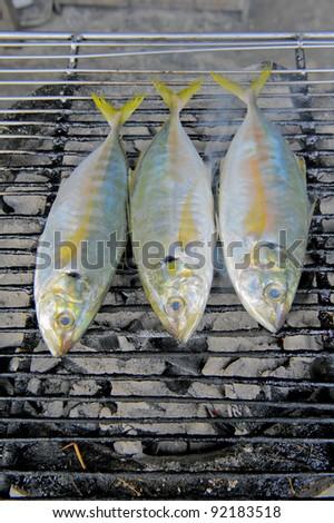 Grilled mackerel. - stock photo