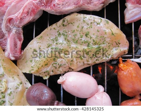 Grilled meats , chicken with spices. - stock photo