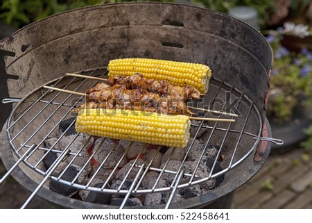 Grilled satay and corn cobs on barbecue in garden