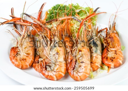 Grilled Shrimp in a plate on white table - stock photo