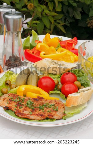 Grilled steak of pork on a plate with salad and vegetables