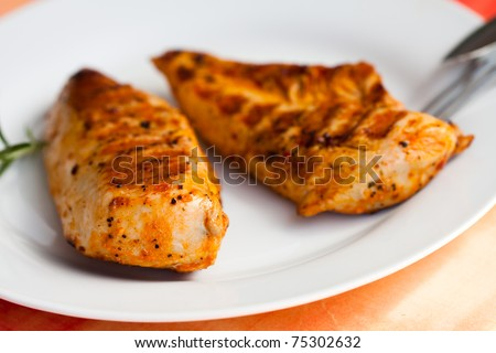Grilled turkey breast - stock photo