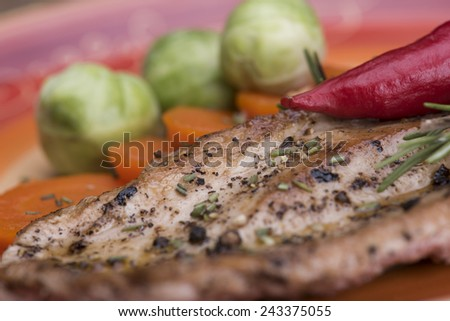 Grilled turkey with rosemary and carrots and brussels sprouts  - stock photo