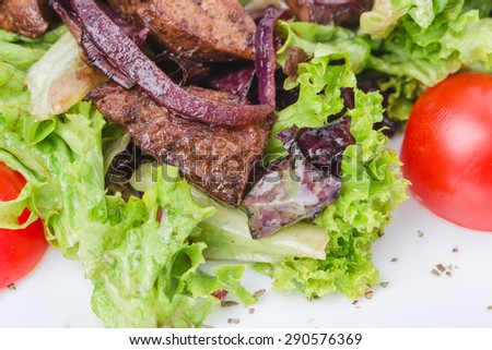 Grilled veal shish kebab with red onions covered with soya sauce on fresh lettuce leaves and tomatoes cherry. Macro. Photo can be used as a whole background.