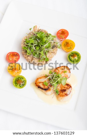 Grilles scallops on white sauce served with mushroom risotto - stock photo