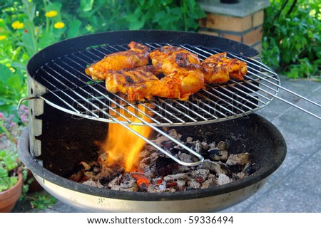 grilling chicken - stock photo
