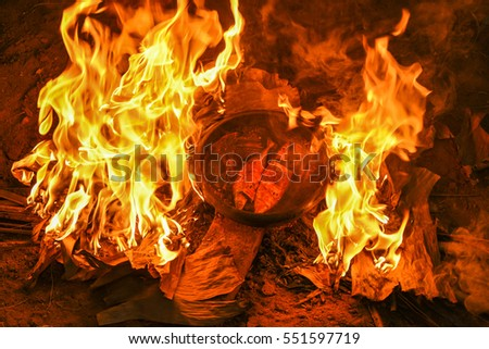 campfire fish kerala seafood stock images royalty free images vectors