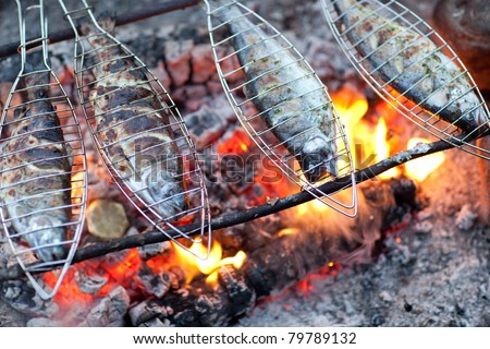 Grilling fish on campfire - stock photo