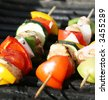 Grilling kabobs during a summer picnic at the park - stock photo