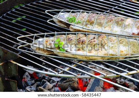 grilling trout - stock photo