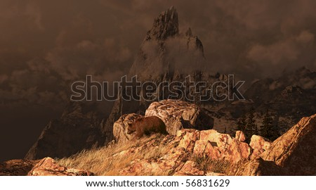 Grizzly bear descending down a mountain in the Rockies. - stock photo