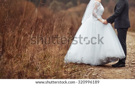 Groom and bride holding hands. Newlywed couple at countryside. Wedding.  - stock photo