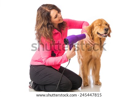Groomer using blowdryer on a dog - stock photo