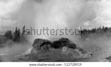 Grotto geyser, upper geyser basin, Yellowstone National Park, Wyoming - stock photo