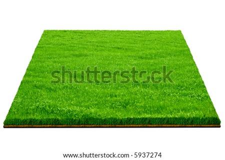ground and grass - stock photo
