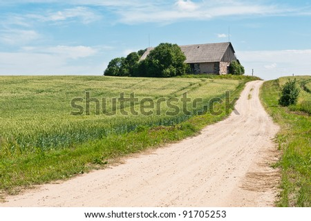 Ground road in the countryside
