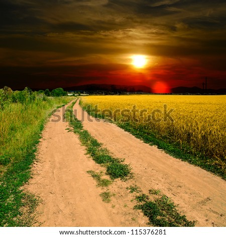 ground road in the field - stock photo