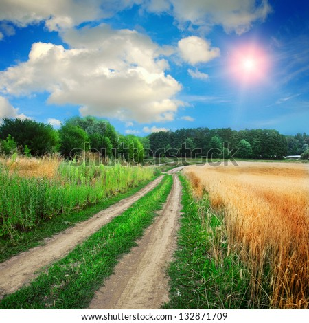 ground road in the wild nature - stock photo