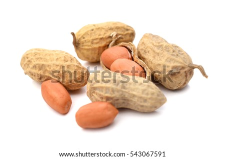 Groundnuts on a white background