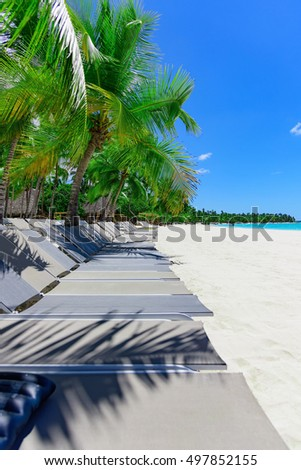 Group deck chairs under an umbrella on a sandy beach sea