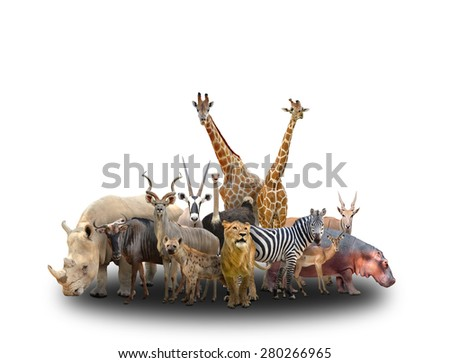 group of africa animals  on white background - stock photo