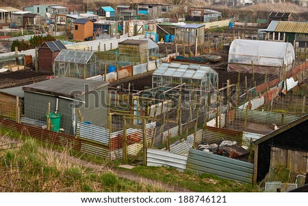 Group of Allotment plots where land is parceled up for gardeners to grow there own vegetables as a hobby - stock photo