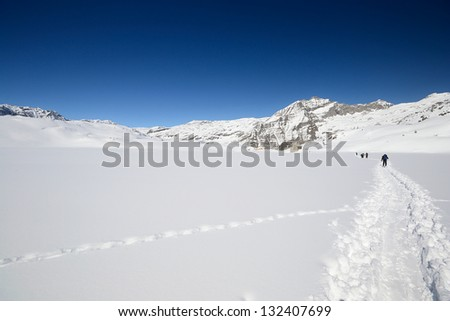 Group of alpinist in the italian Alps with scenic high mountain view in the background. Rear view. Location: Gran Paradiso National Park, Piedmont. - stock photo