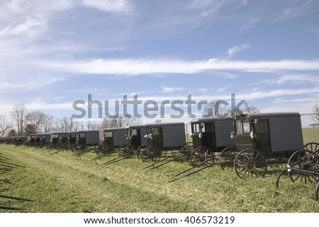 Group of Amish buggies for sale at auction.
