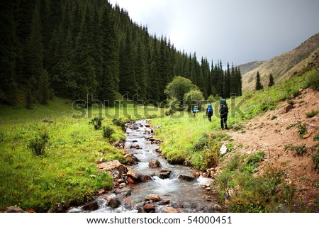 Group of backpackers walking in summer mountains - stock photo