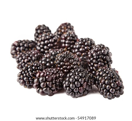 Group of blackberries isolated on white background. - stock photo