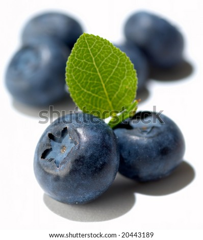 Group of blueberries isolated on white - stock photo