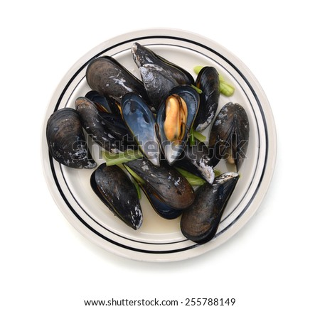 group of boiled mussels in shells isolated in plate on white background  - stock photo