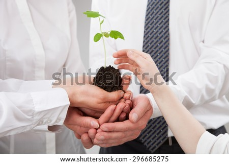 Group of business people holding a green sprout and child's hand reaching out to it - closeup shot - stock photo