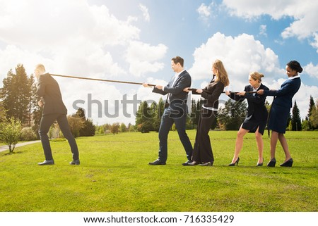 Group Of Business People Pulling A Rope In Opposite Direction At Park