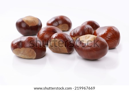 group of chestnuts on white - stock photo