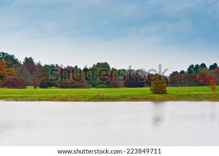 Group of colorful autumn trees standing on a meadow by lake on overcast day. Research Forest near Louisville, Kentucky, USA - stock photo