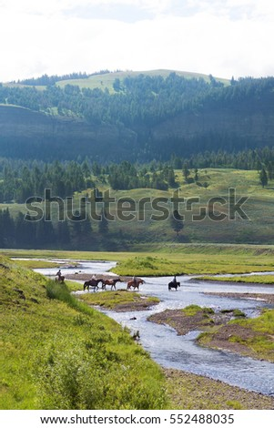 Group of cowboys riding through a stream in Yellowstone National Park, United States