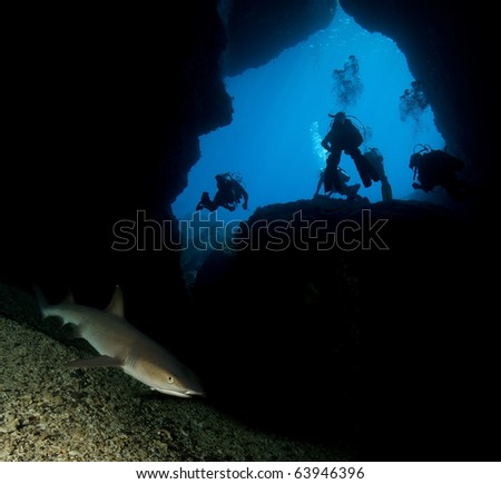 Group of divers by shark cave - stock photo
