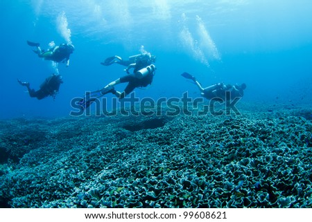 Group of divers swimming over a coral reef at Bali, Indonesia - stock photo