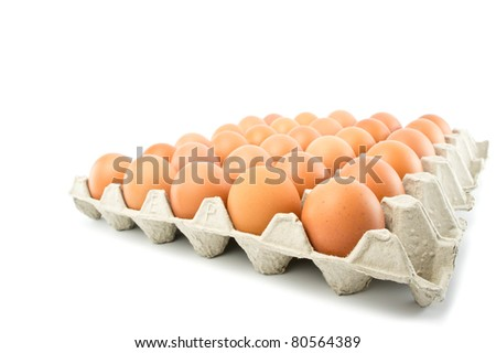 group of eggs isolated on white