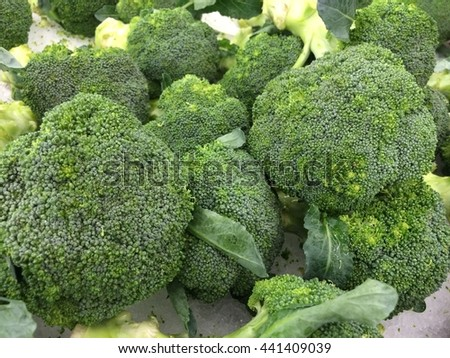 Group of fresh broccoli close up - stock photo