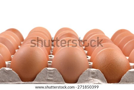 Group of fresh eggs in a  paper tray
