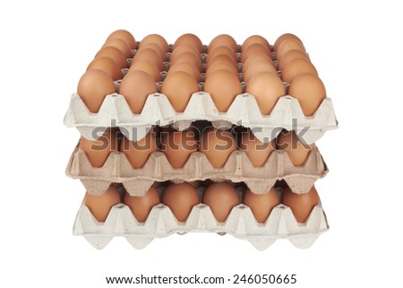 Group of fresh eggs in pater tray isolated on white - stock photo