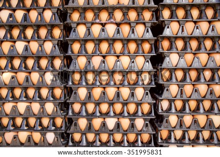 Group of fresh eggs in tray