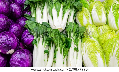 Group of fresh organically grown red cabbage, baby bok choy and napa cabbage in the farmer market at Puyallup, Washington, USA. Panoramic style. - stock photo