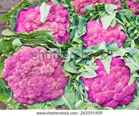 Group of  fresh purple cauliflower on vegetable market, Sicily - stock photo