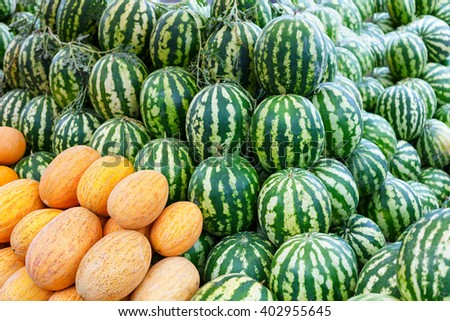 Group of fresh ripe green watermelons and yellow sweet melons in Azerbaijan - stock photo