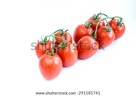Group of fresh ripe Roma Tomatoes with water drops isolated on white background. Close-up view of Roma tomatoes, also known as Italian tomatoes or Italian plum tomatoes. Copy space. - stock photo